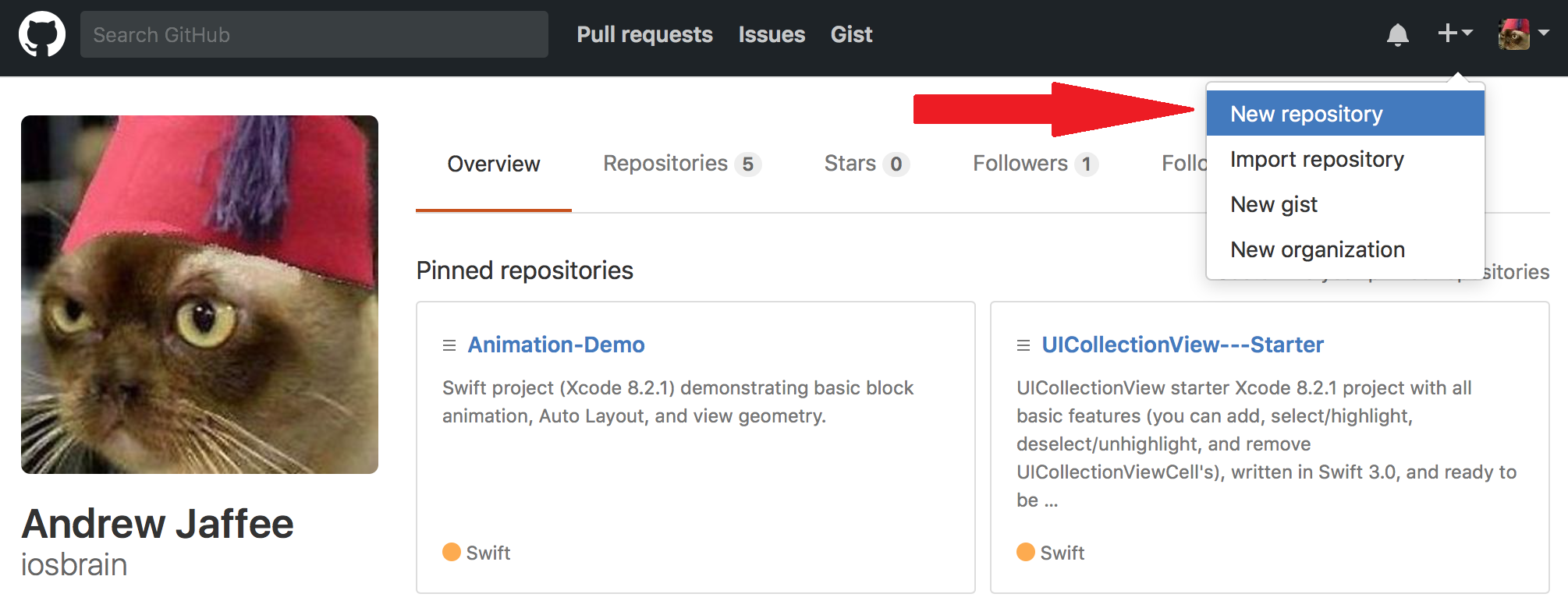 Creating a new Git/GitHub repository for your Xcode project — a
